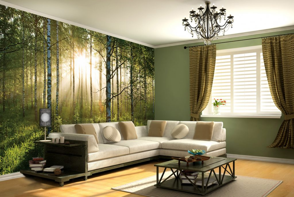 home-with-wall-murals